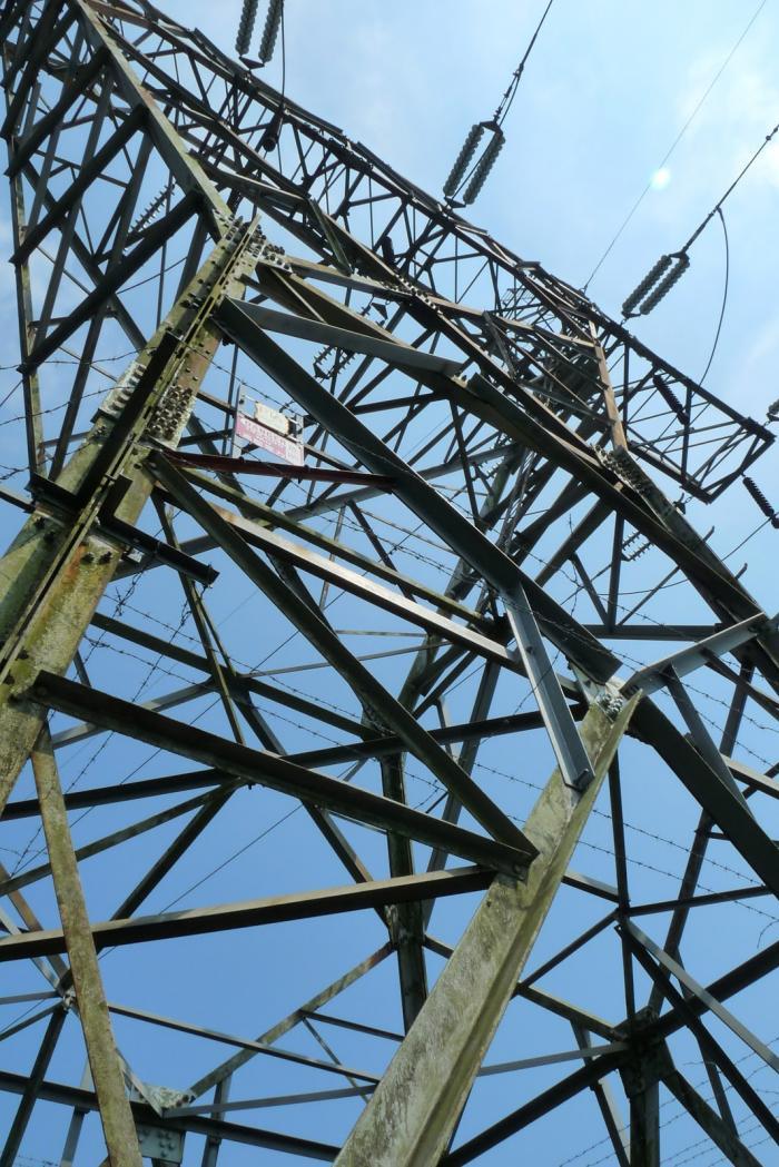 从输电塔下走几分钟,真的到了野猪径&