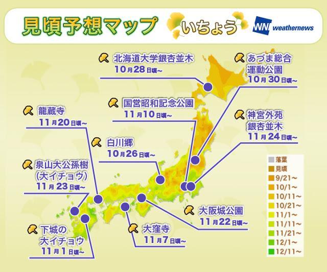 日本紅葉攻略 最前線 見頃 時間 關西 京都 大阪 博多 熊本 東京 北海道 東北 金澤 白川鄉 weathernews 全国各地紅葉見頃予想発表 今年紅葉見頃北日本平年並、東〜西日本遅予想 - - SeeWide 香港特搜