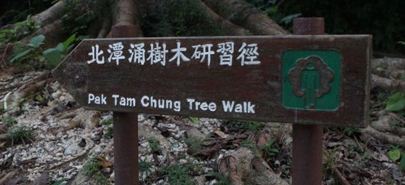 北潭涌樹木研習徑
