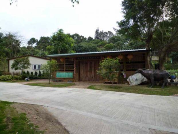 菜聯社林村有機農場