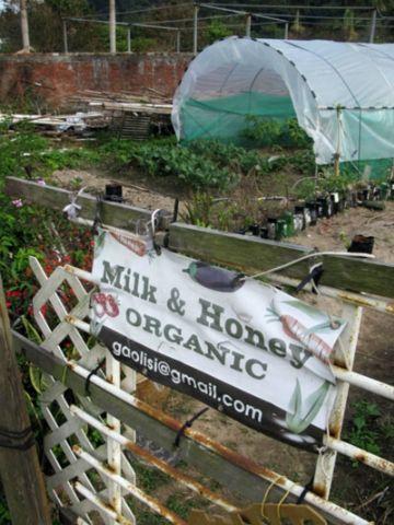 MILK & HONEY ORGANIC 應許地有機耕種