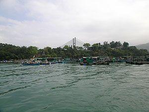 馬灣魚類養殖區 (漁排)