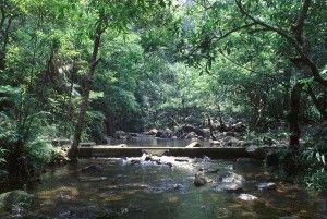 大埔滘特別地區 / 大埔滘自然護理區