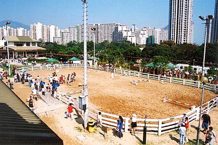 屯門公眾騎術學校