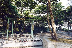 龍躍亭、浪韻樂園和樹影樂園