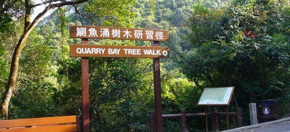 鰂魚涌樹木研習徑