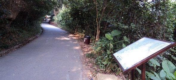 香港仔樹木研習徑