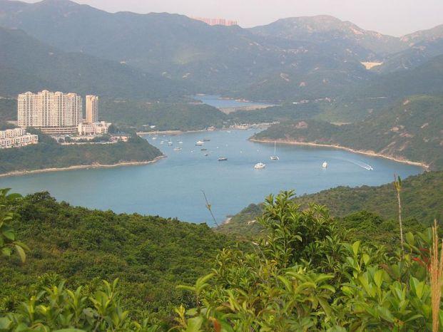 大潭港紅樹林