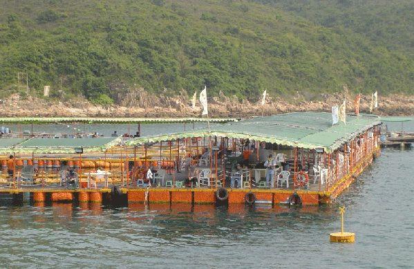 西貢滘西灣休閒垂釣樂園