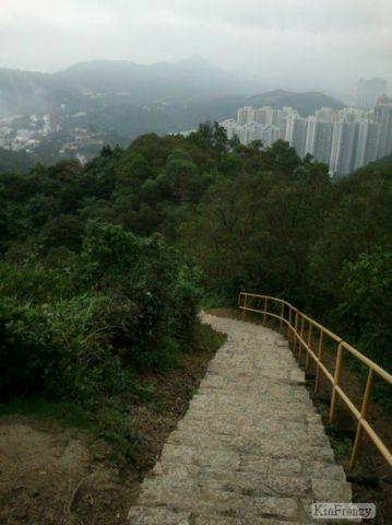 鴨仔山 Duckling Hill (魷魚灣山)