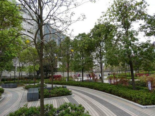 唐明街公園