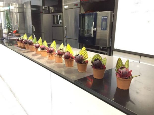 Chefs Chocolate & Culinary School