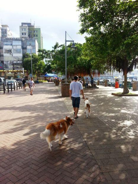 西貢郊野公園遊客中心