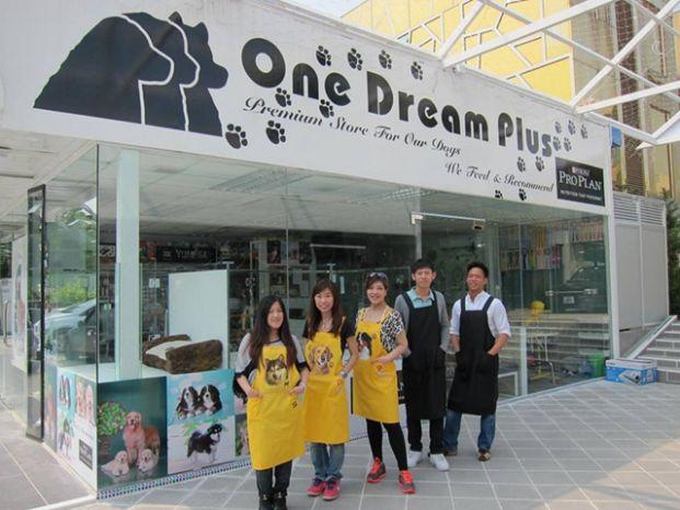One Dream Plus