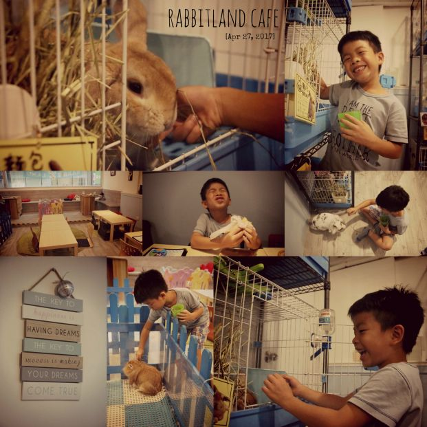 Rabbitland Cafe
