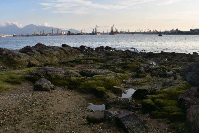 蝴蝶灣泳灘